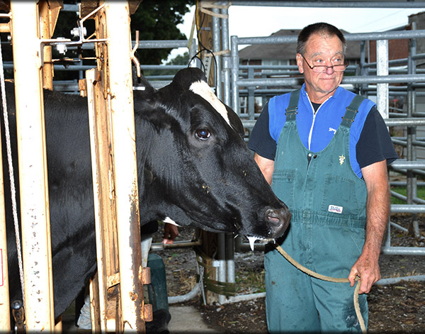 Cattle Wellness Care and Herd Health at Veterinary Services Chapel Hill, TN