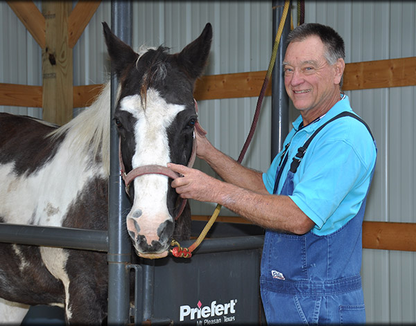 Equine Health and Wellness Care in Chapel Hill, TN